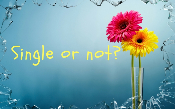Single or not_ (1)