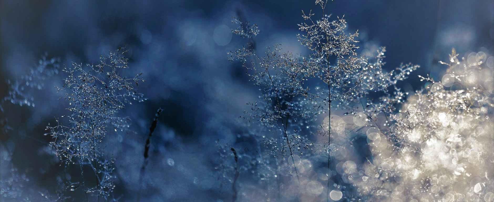 Χριστουγεννιάτικη Κατάθλιψη, κατάθλιψη των Χριστουγέννων, μελαγχολία, κατάθλιψη, christmas blues xmas mood blue xmas blue